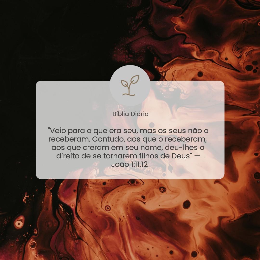 João 1:11,12