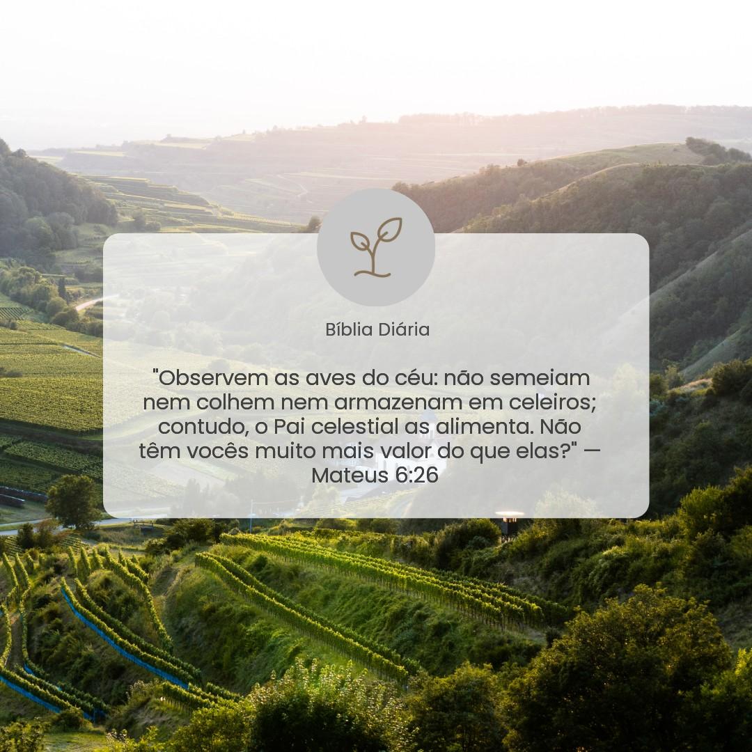 Mateus 6:26