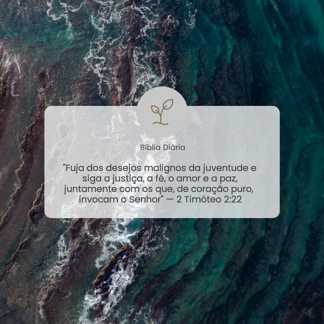 2 Timóteo 2:22