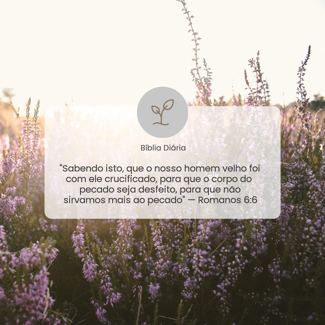 Romanos 6:6